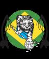Capoeira Filhos de Tigre